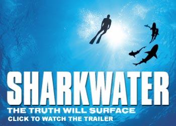 sharkwater link