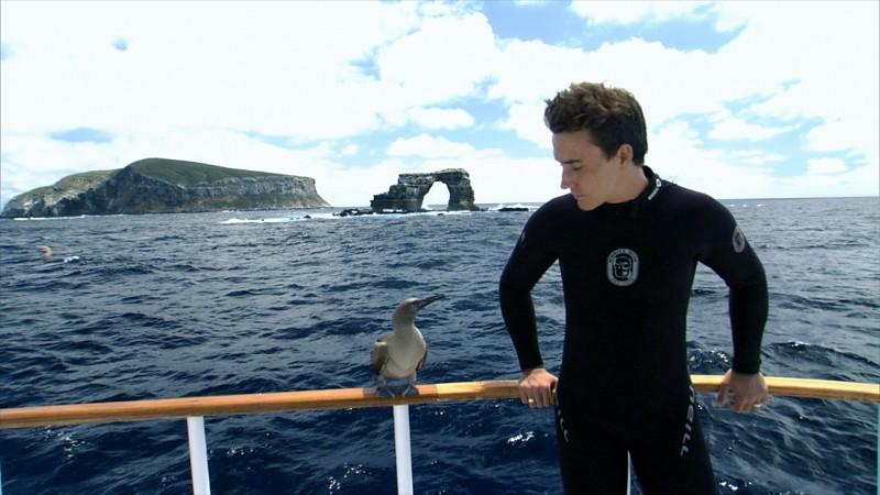 Rob Stewart at Darwin Island