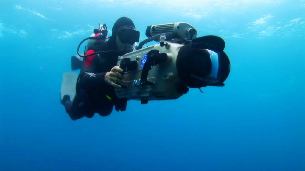 Rob Stewart filming