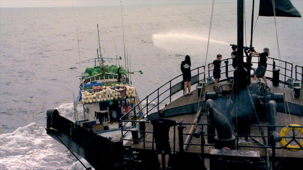 Sea Shepherd's Ocean Warrior