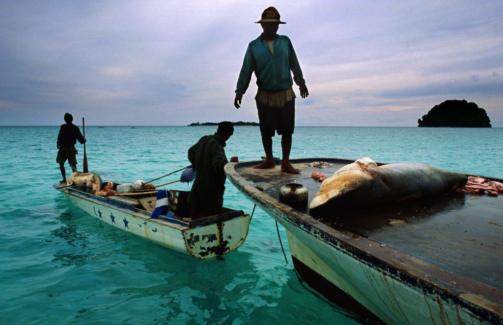 Shark fishermen in Sabah
