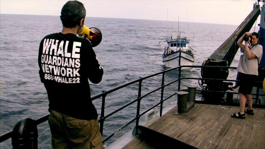 Sea Shepherd's Ocean trying to intercept the pirate fishing boat