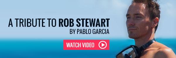 rod stewart 2017