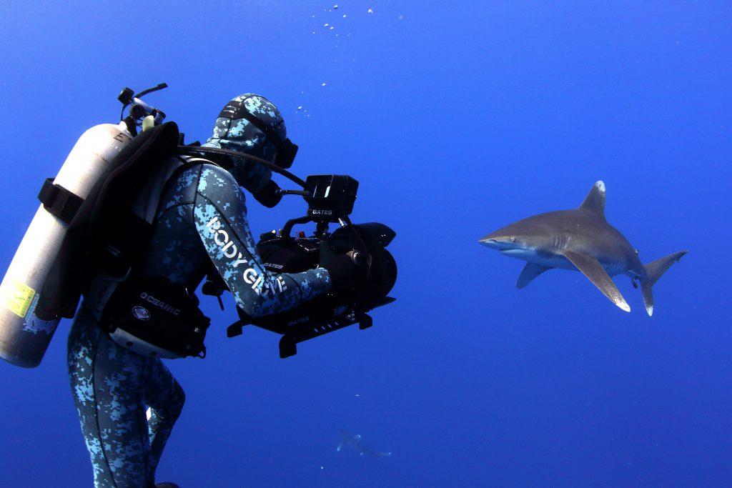 Rob Stewart Filming White Tips