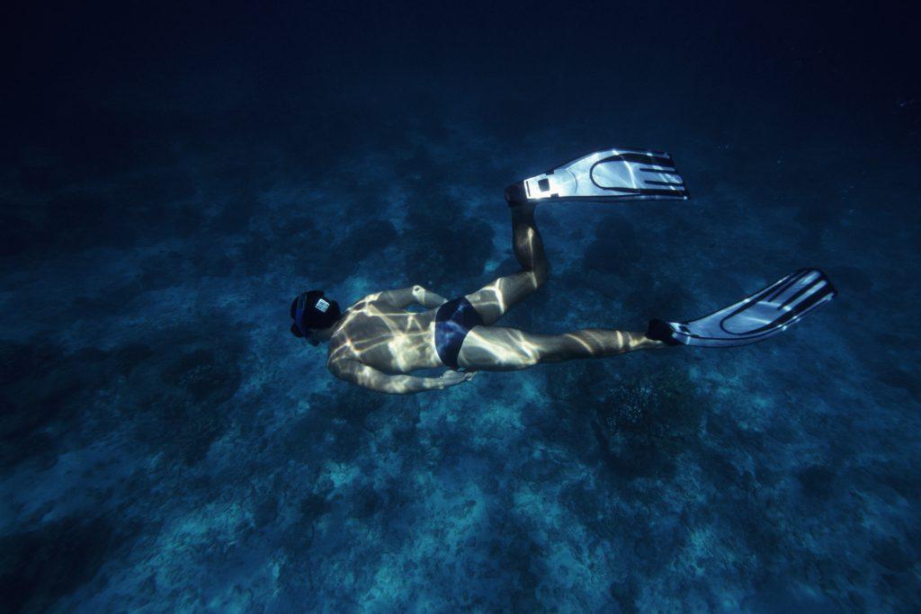 Rob Stewart Diving